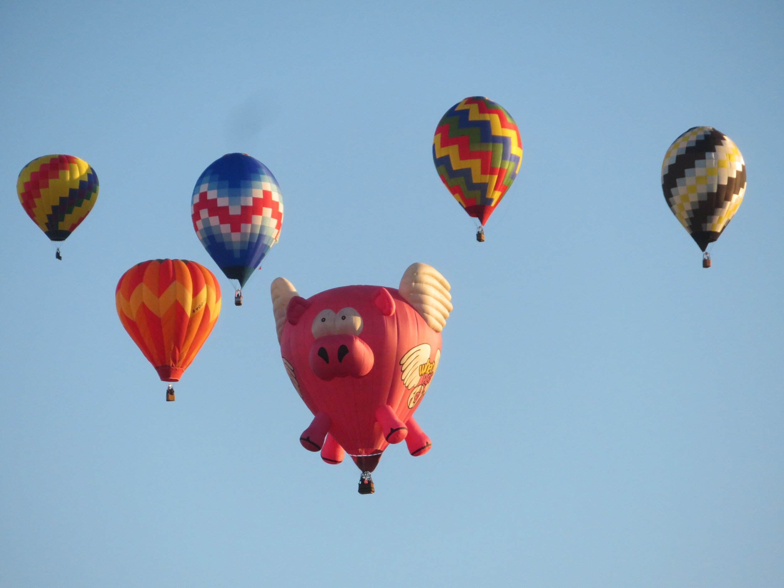 The sky was blue. The air was cold. The day was perfect. And the view? The view was spectacular. Even the pig was flying!