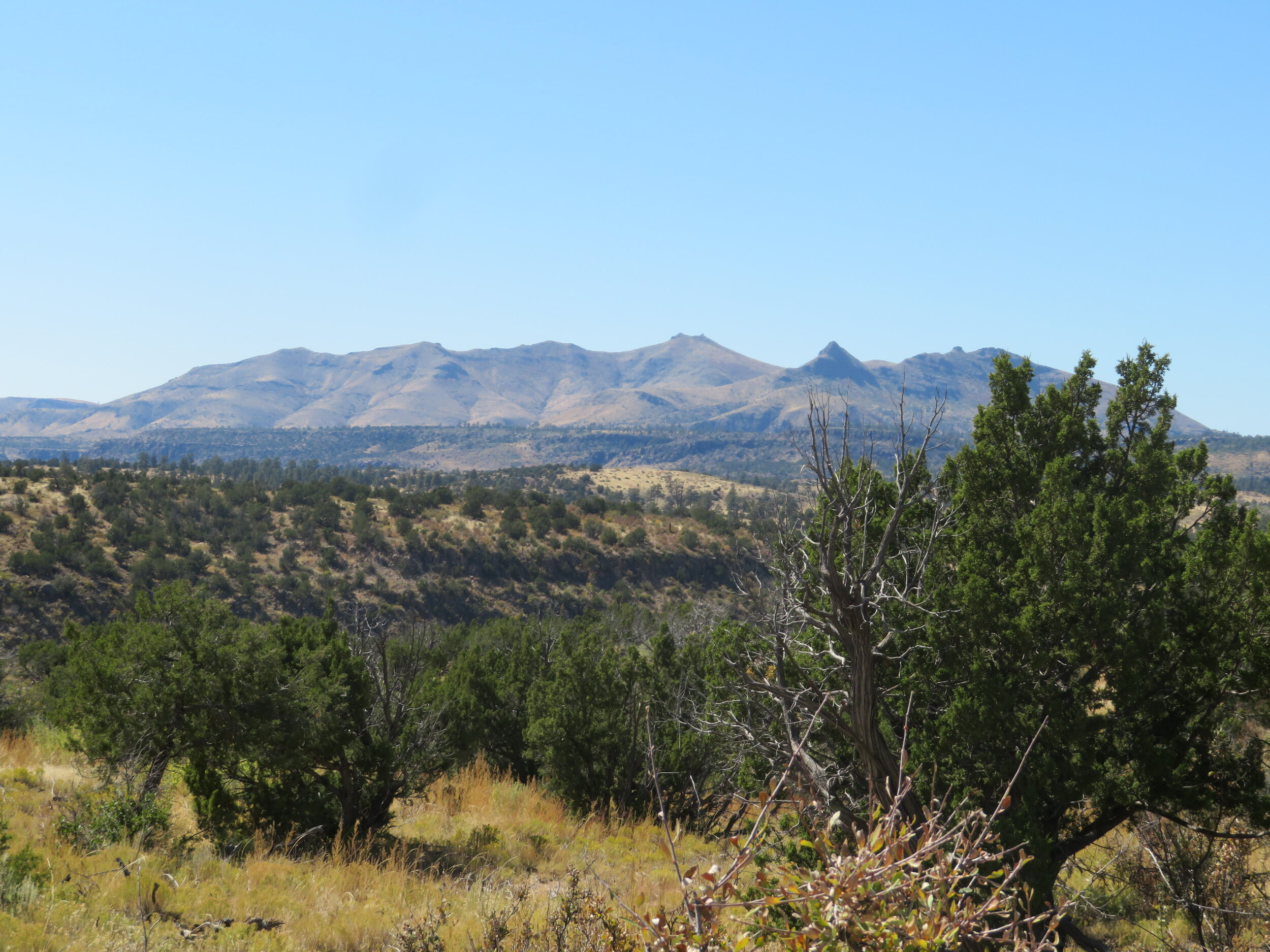 Jemez Mountain view from the Frijoles Rim Trail