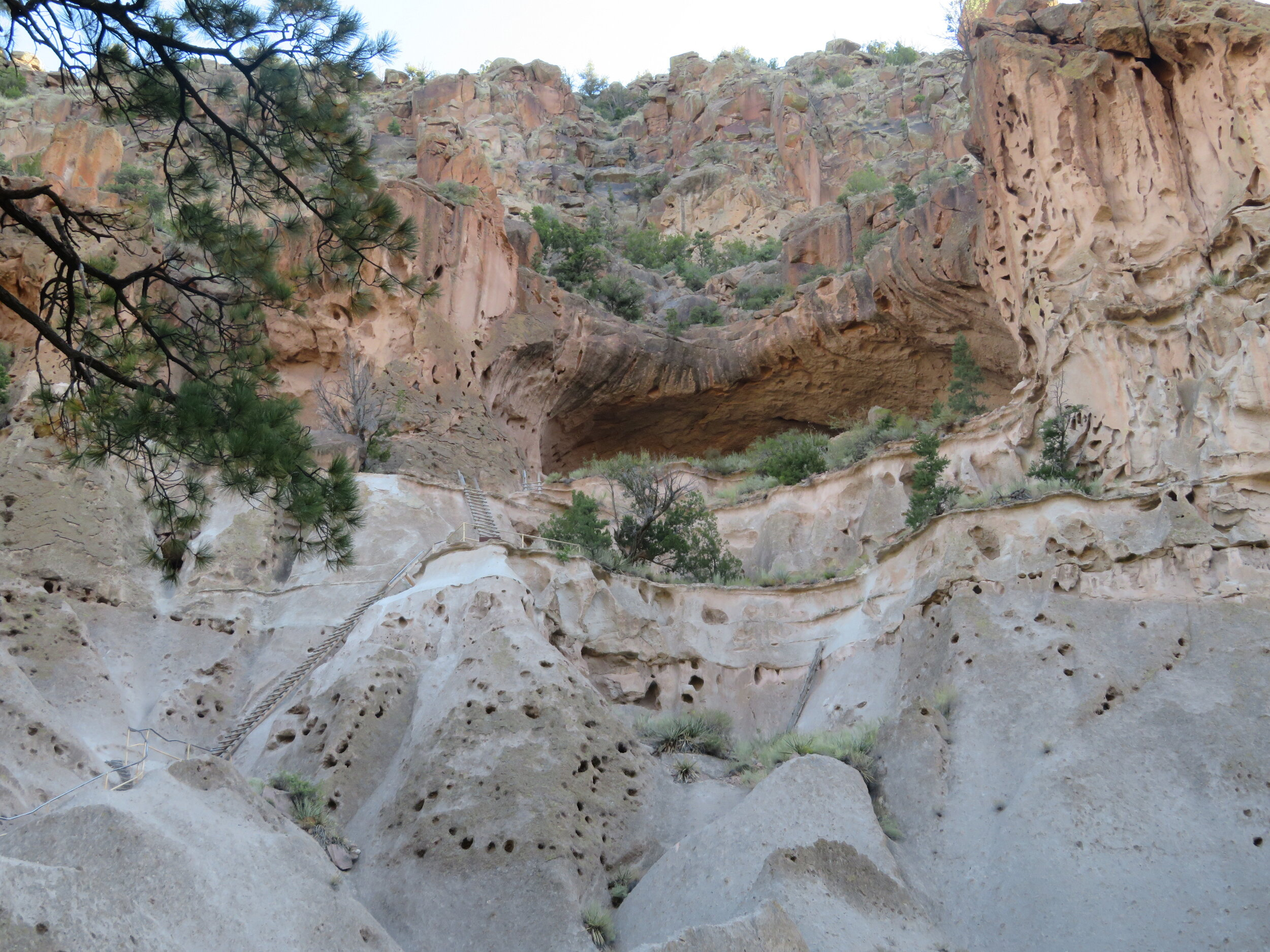 A view of the Alcove House ceremonial cave from below. It was just too crowded to visit today.