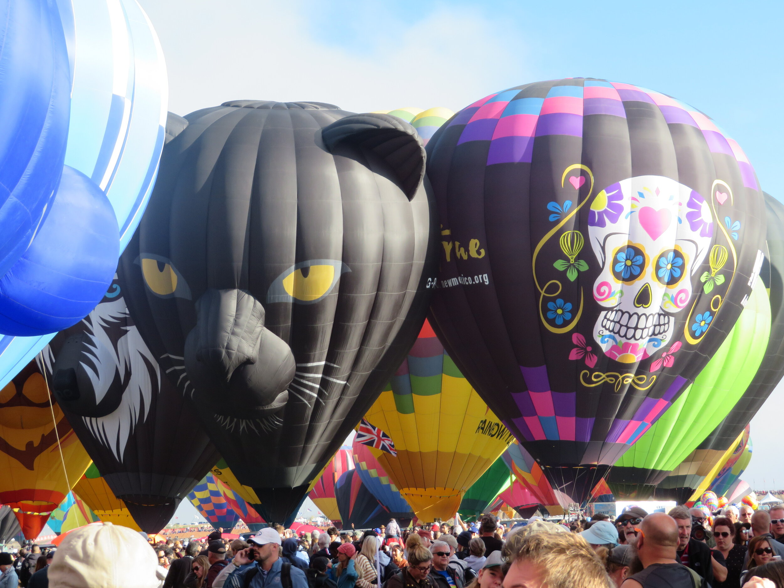 Roger the Panther & NM balloon