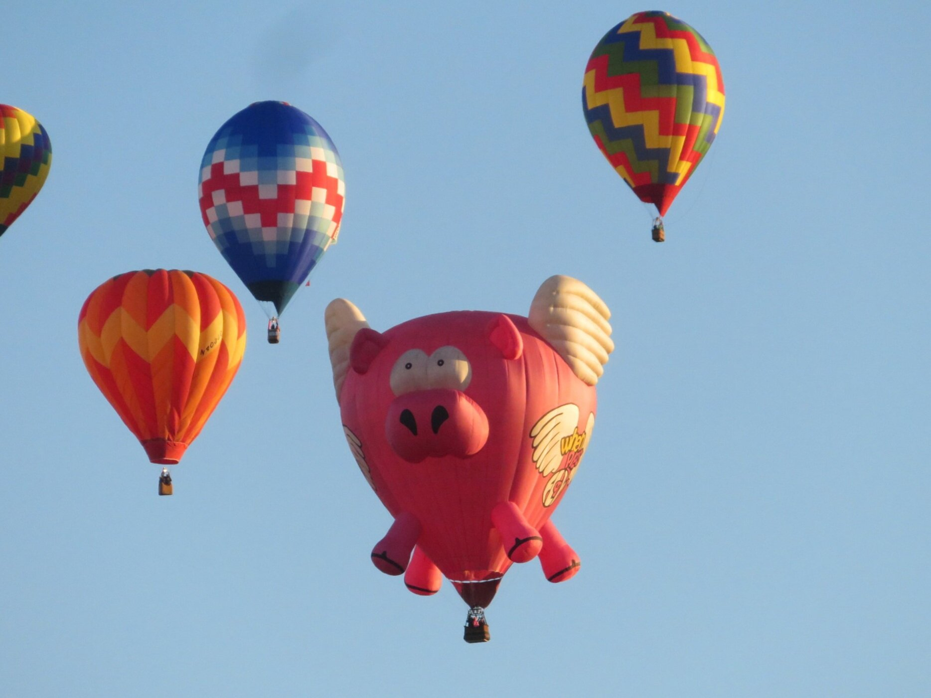 When Pigs Fly / Ham-let