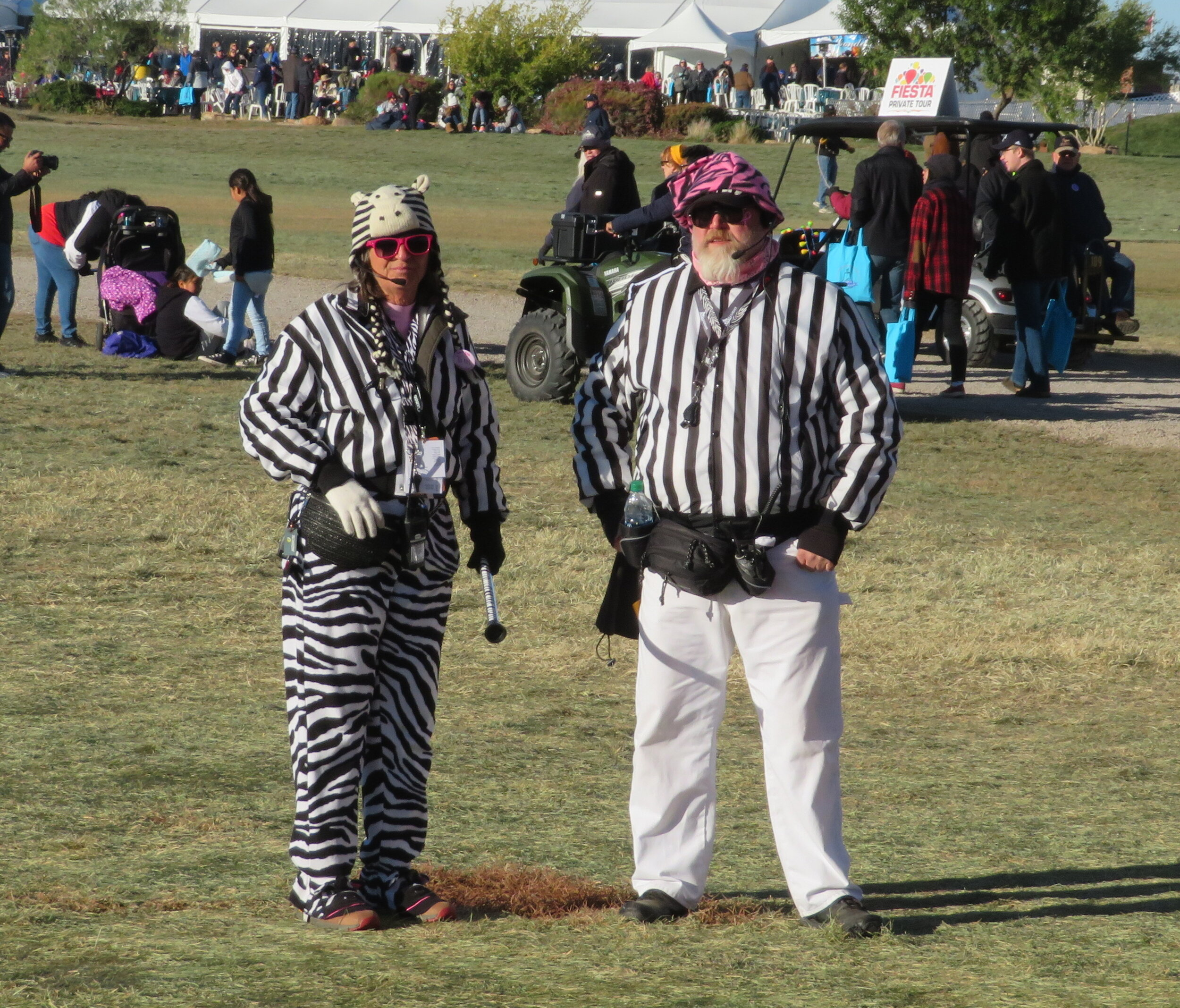 balloon-special-shapes_zebras dressed in stripes.JPG