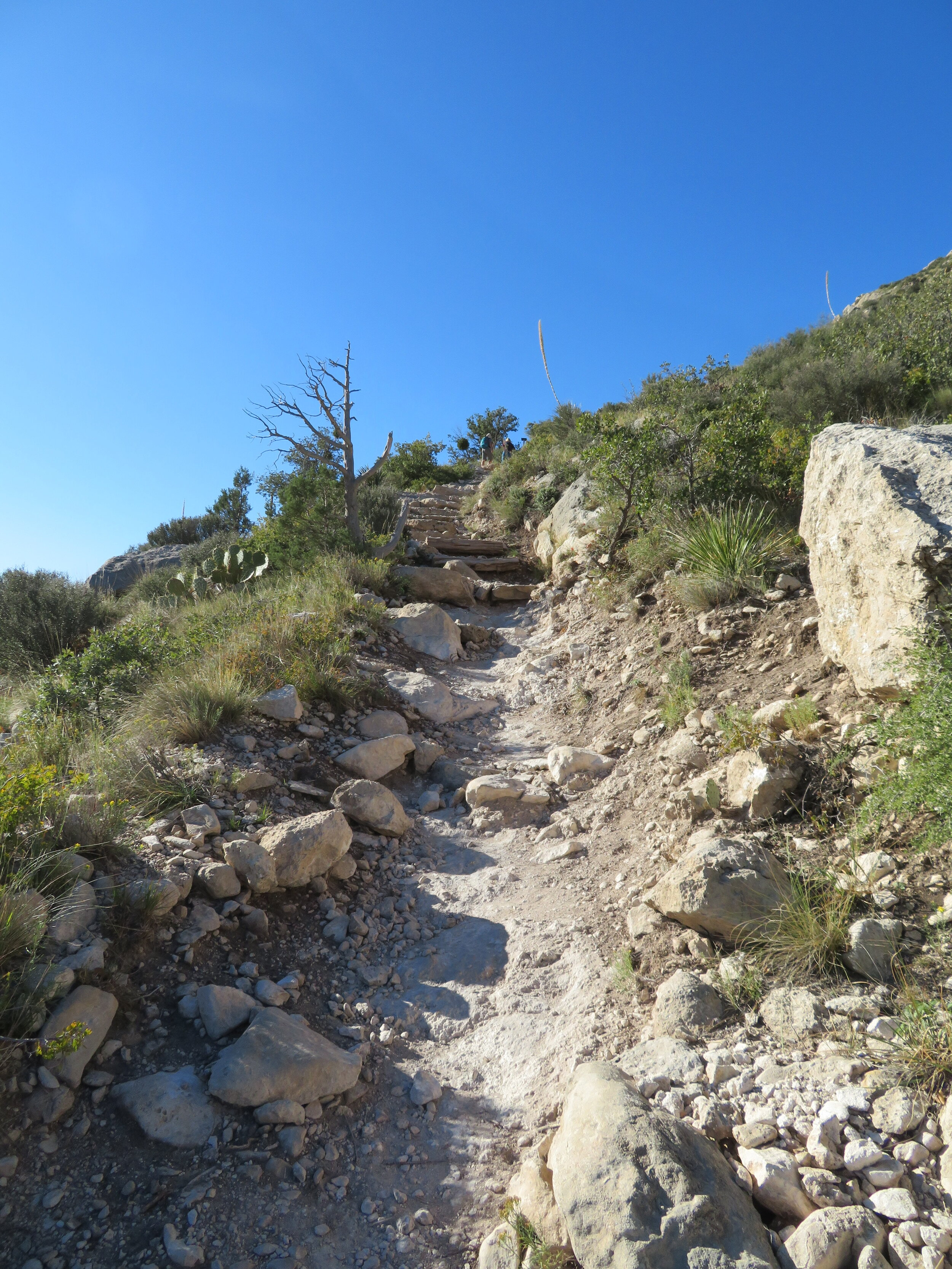The peak trail was steep, rocky and all UP.