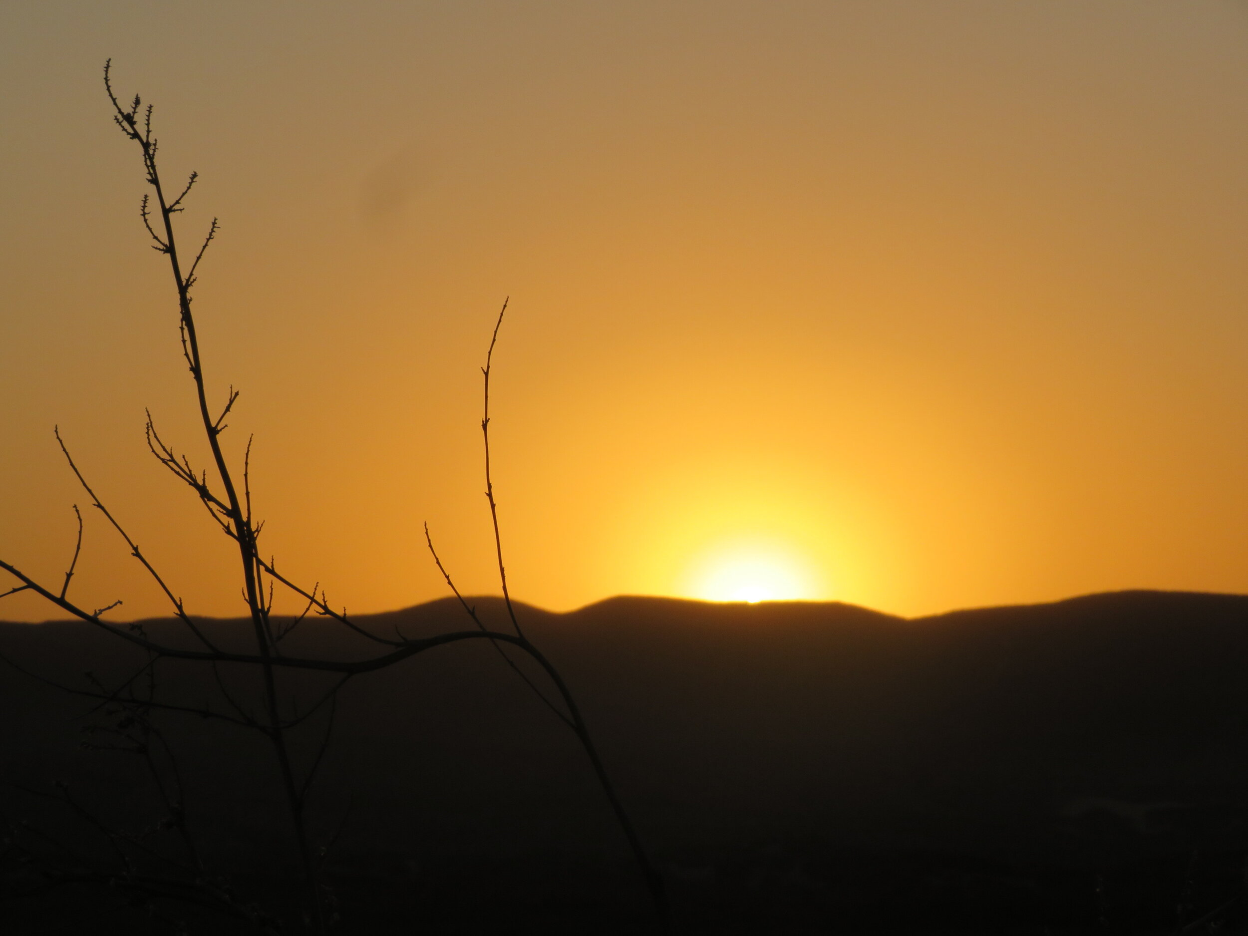 Great sunset in Big Bend