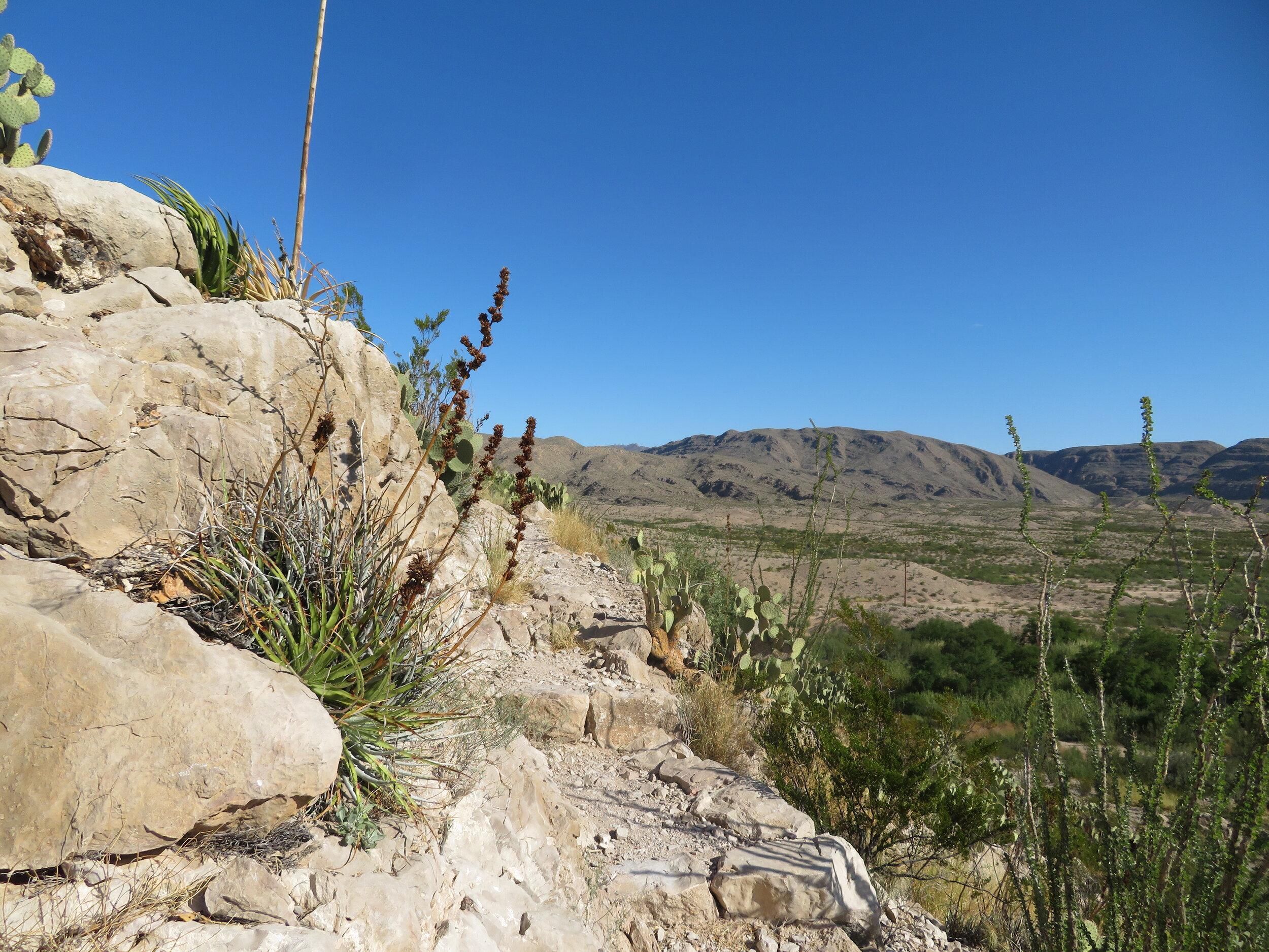 A rocky, rugged trail