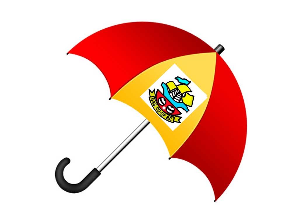 coopumbrella.jpg