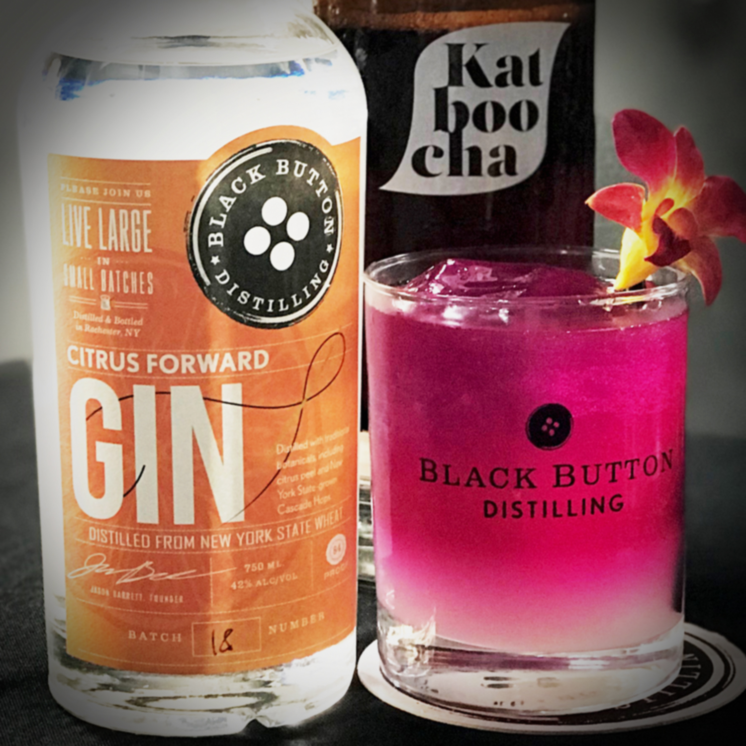 Black Button Distilling's Citrus Forward Gin and cocktail