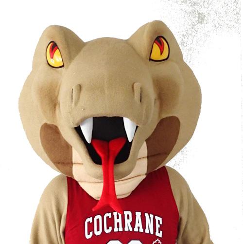 Cochrane High Cobras