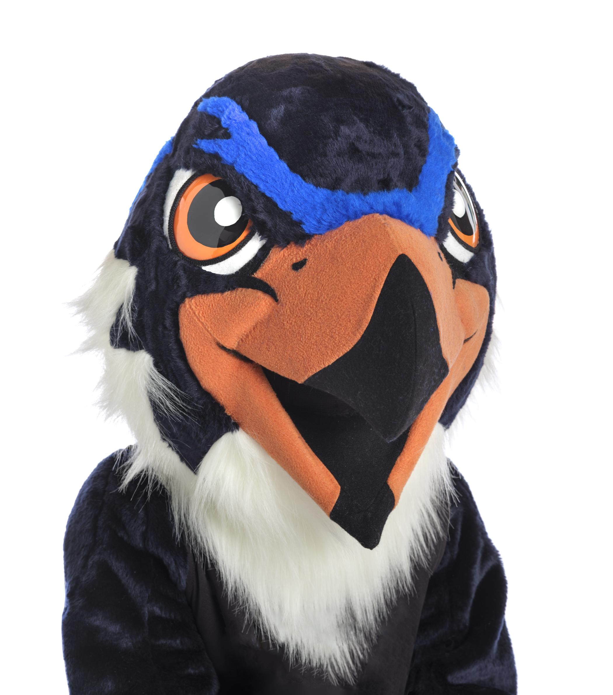 Hewitt School Blue Hawks