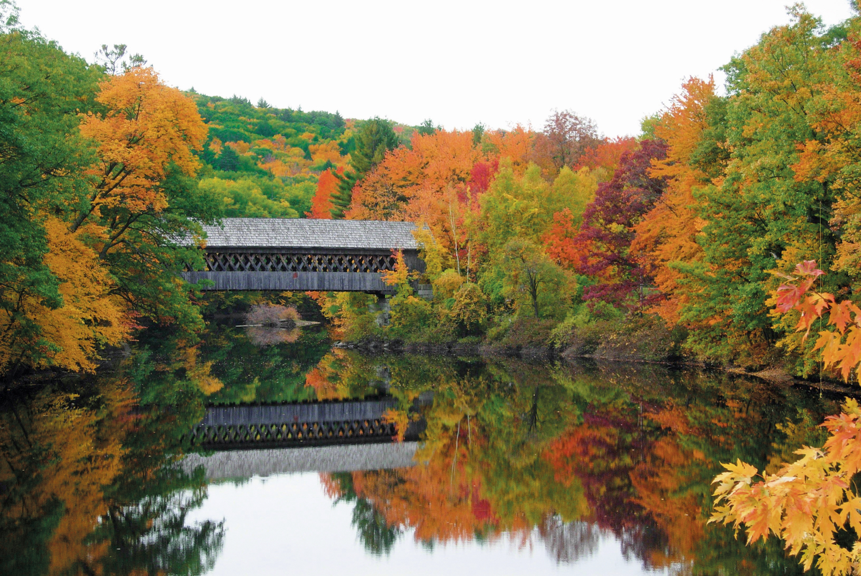 Hidden bridge on New England Colleges campus.