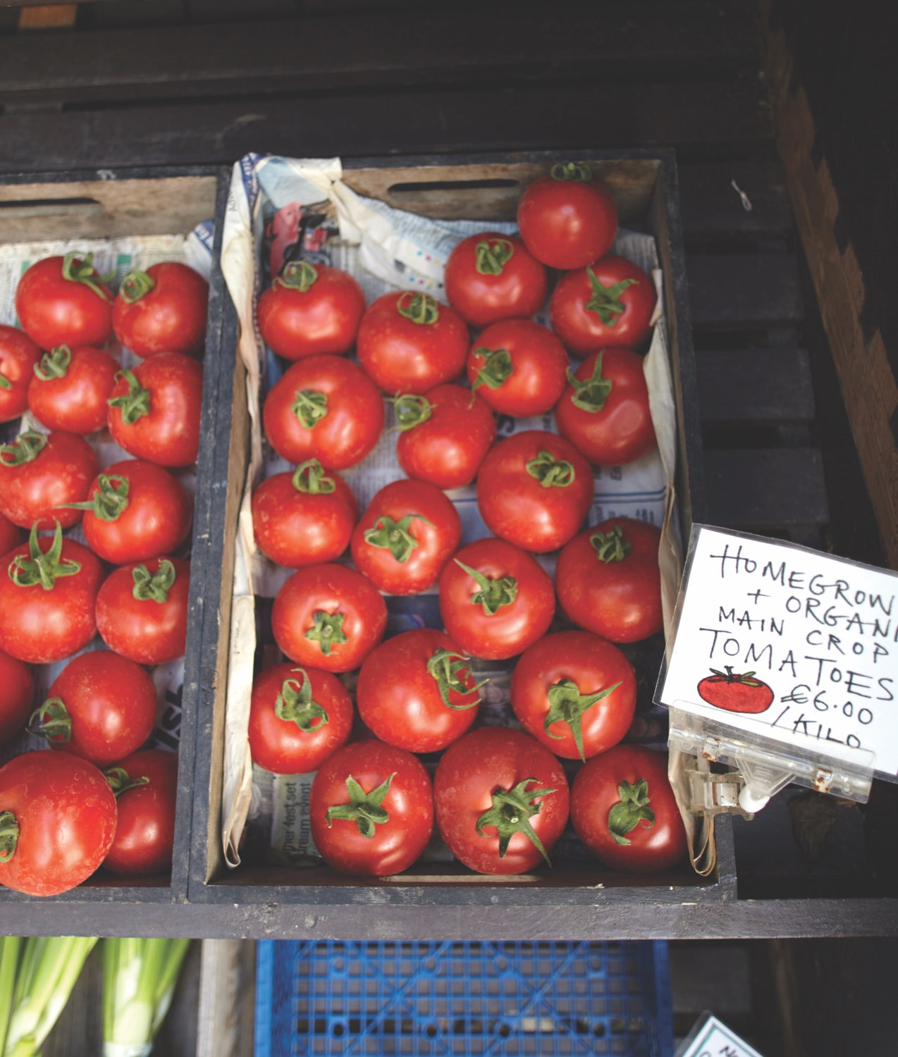 Fresh tomatoes used at the Ballymaloe Cookery School