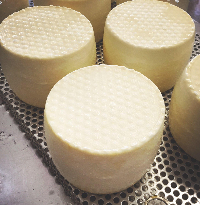 Wheels of cheese,Ballymaloe Cookery School