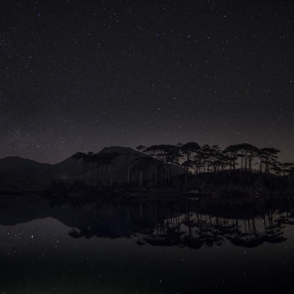 connemara-life-pine-island-mark-furniss.jpg