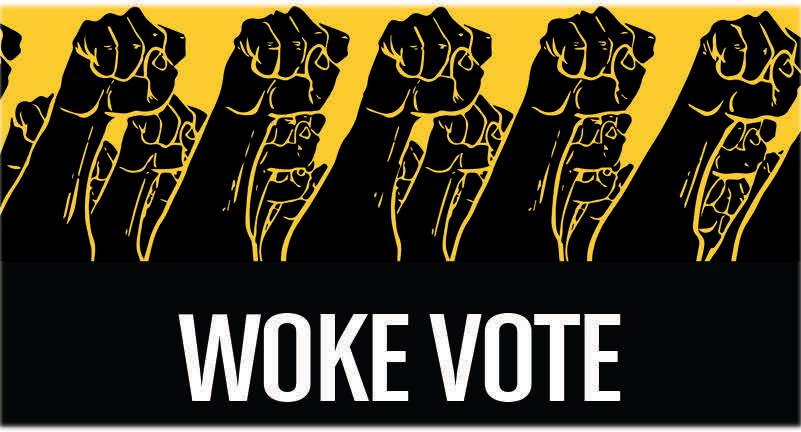 Woke Vote - Woke Vote seeks to to invest in the activation, long-term engagement, training and development of new organizers, and mobilization of historically disengaged voters of color.www.wokevote.us