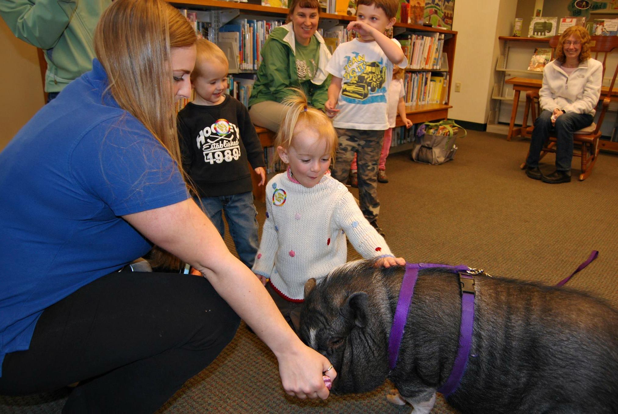 Homeward Bound Animal Care Lakes Region NH  Doggonit Training Kelly Sullivan  Local Dog Trainer NH  Dog Walks  Well Behaved Dog