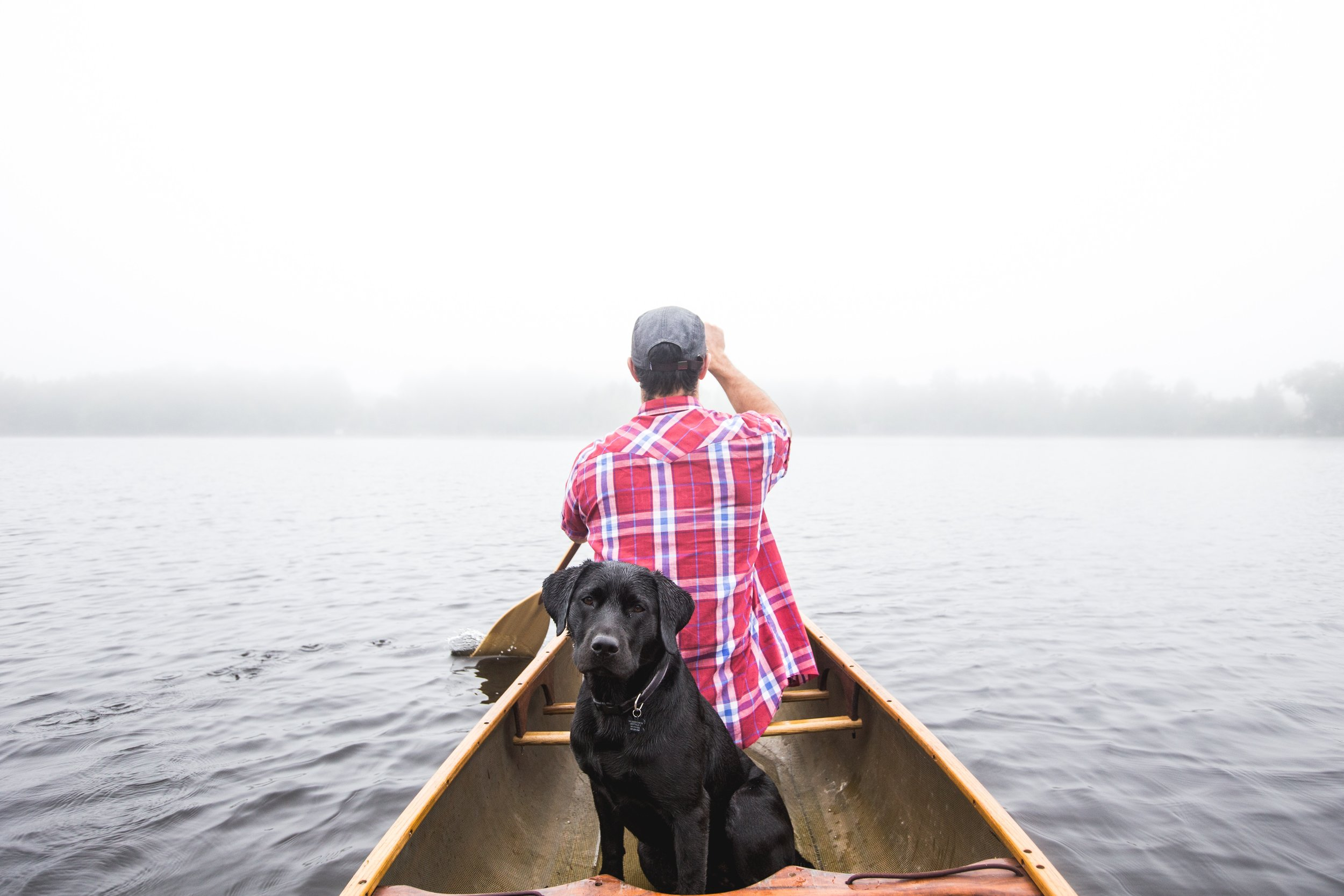 Homeward Bound Animal Care Lakes Region NH  Boating with your dog safety tips  Ice out