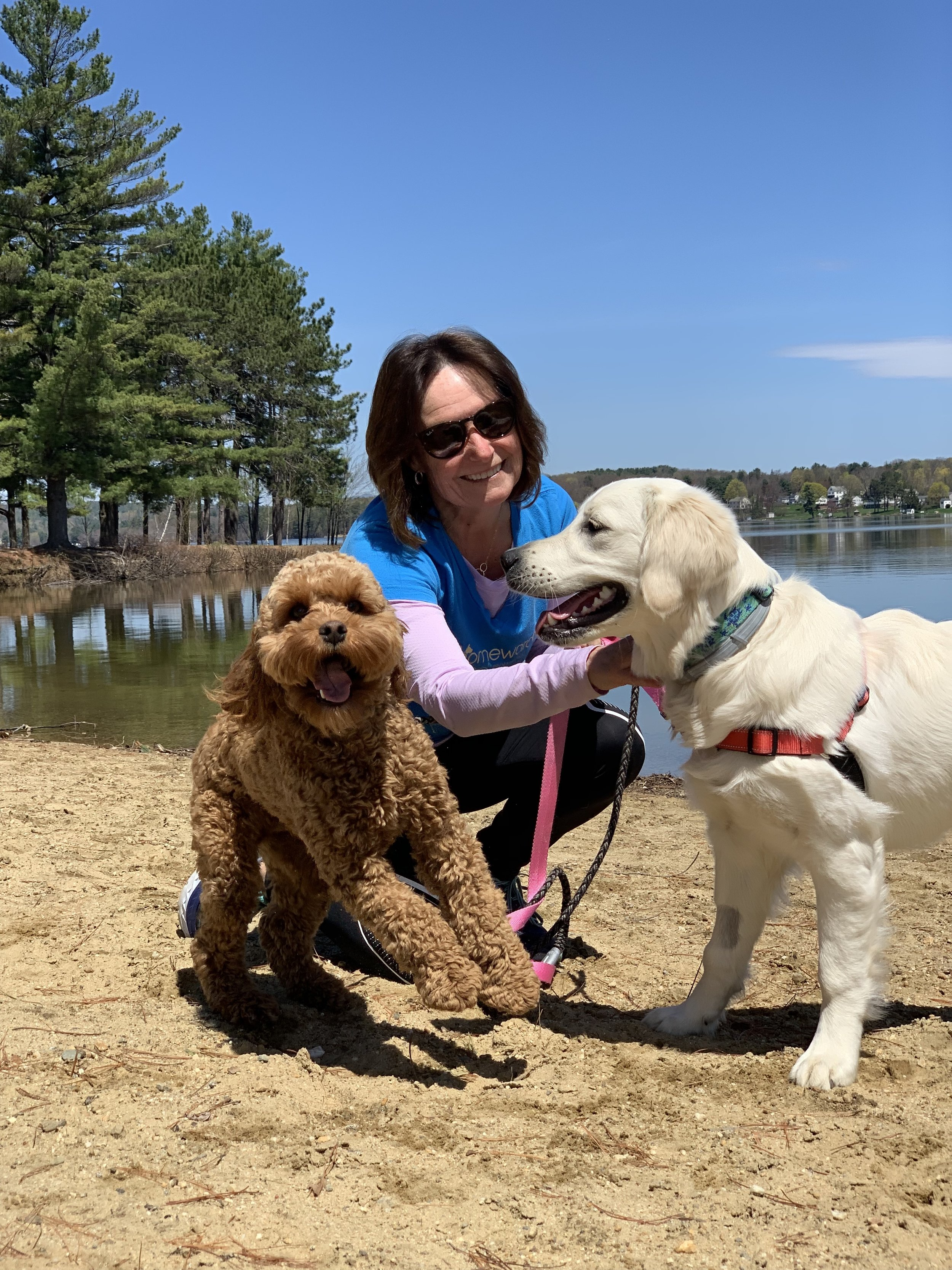 Lee with dog walking clients Andre and Maggie of Laconia at Opechee Park