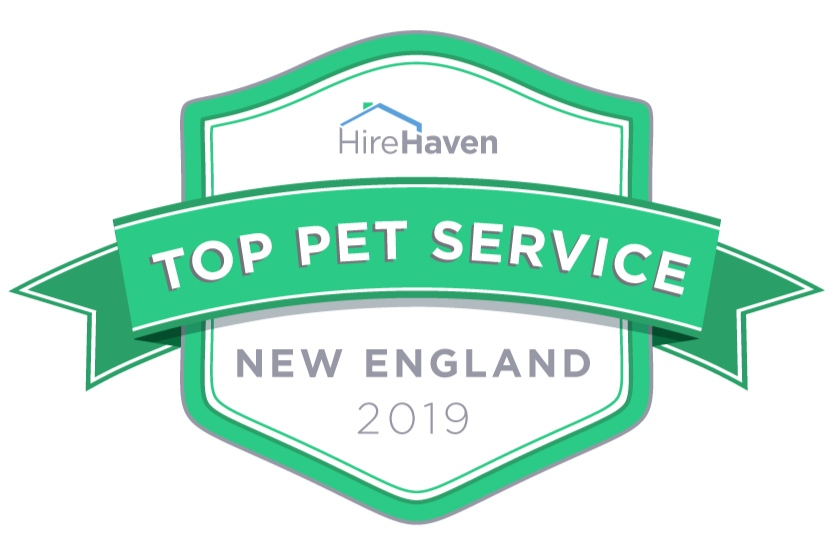 Top New England Pet Services fro 2019