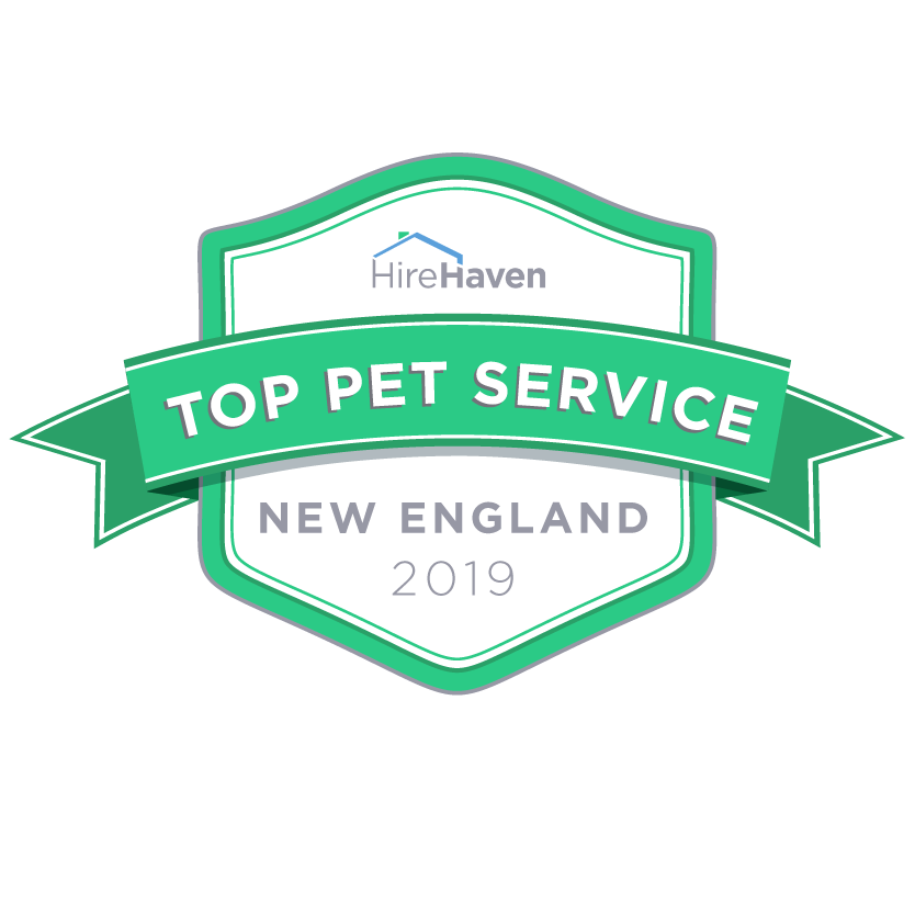Top New England Pet Services for 2019  Homeward Bound Dog Walking