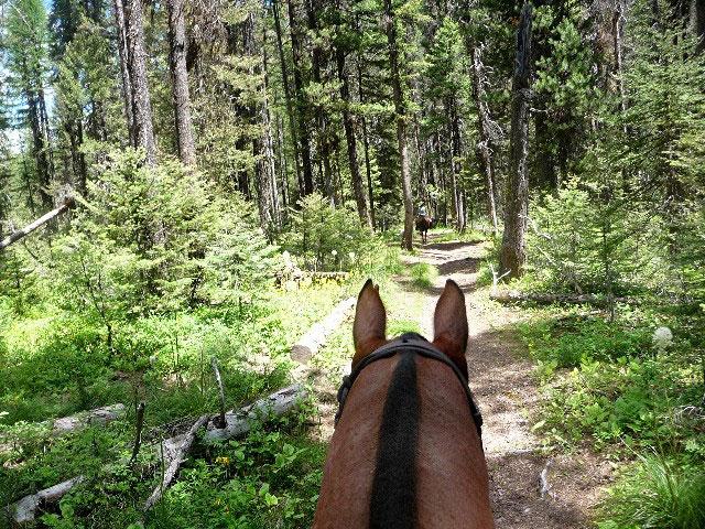 Monture-Trail.jpg