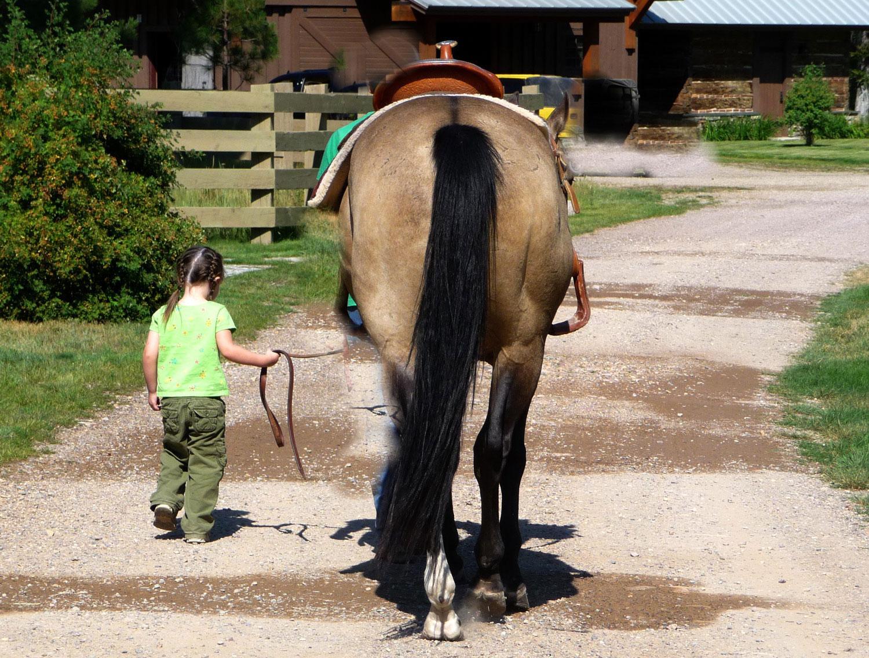 Horse-riding-01.jpg