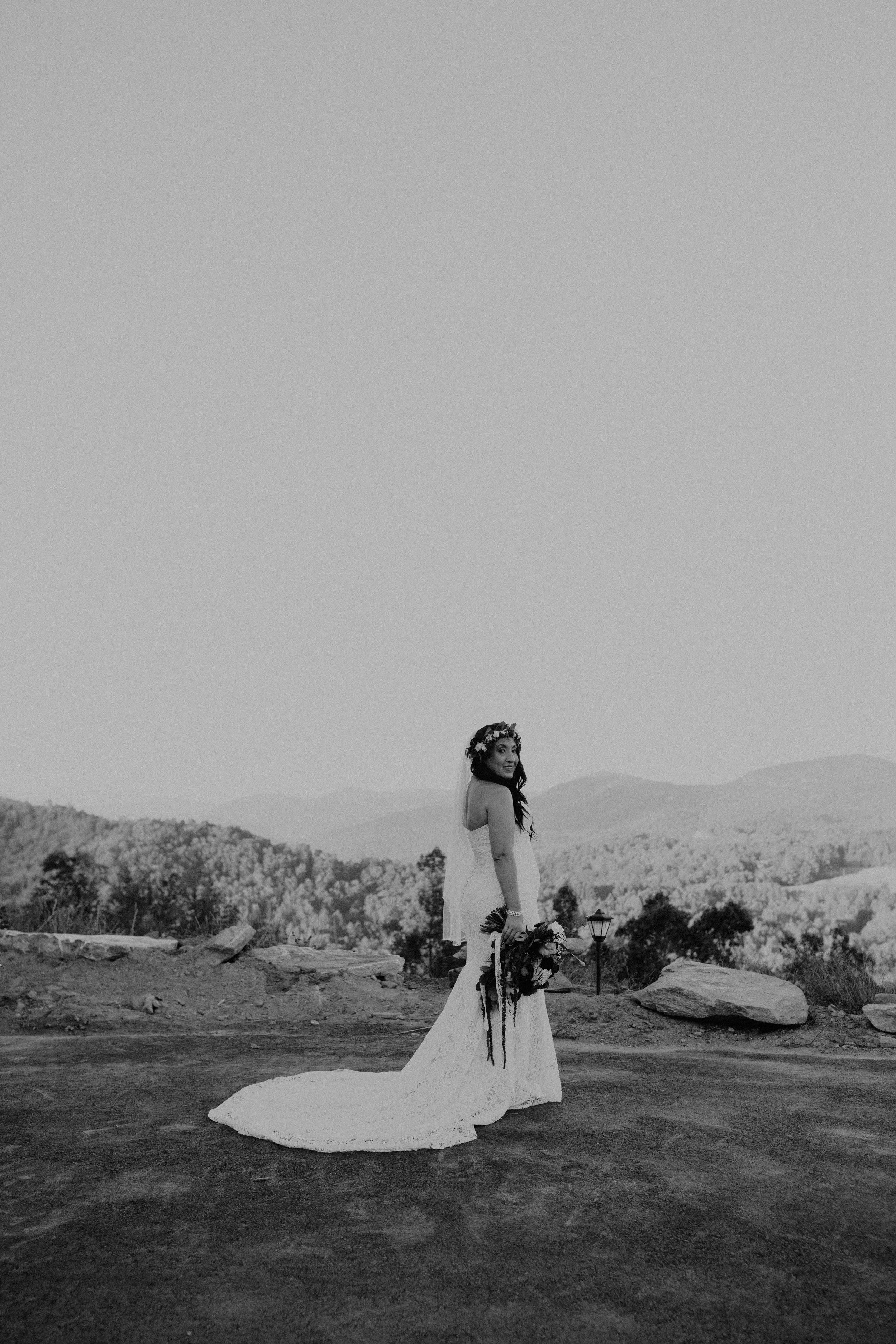 Point Lookout Vineyards Hendersonville North Carolina -Wedding-Renee and Jason-62.JPG