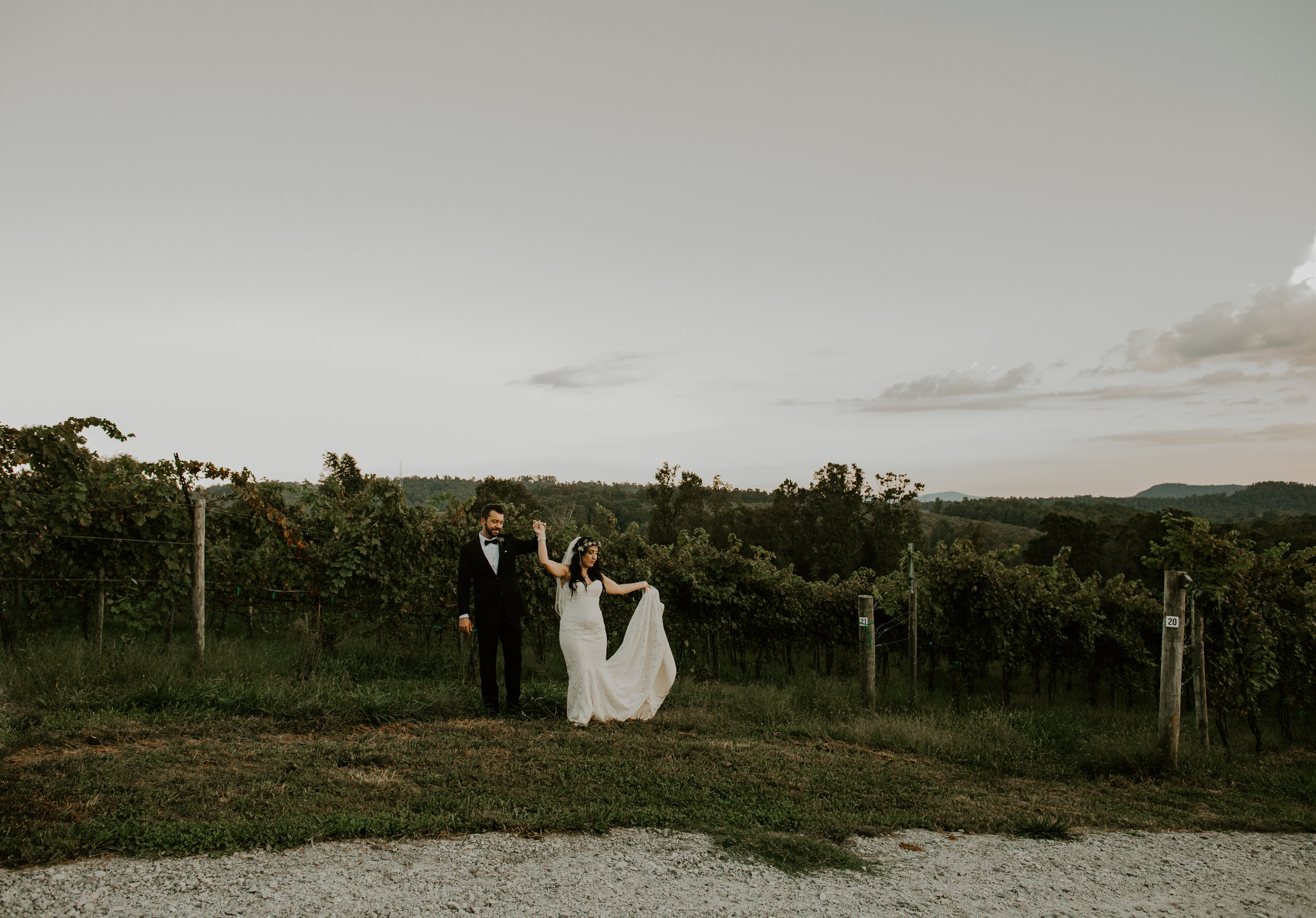 Point Lookout Vineyards Hendersonville North Carolina -Wedding-Renee and Jason-79.JPG
