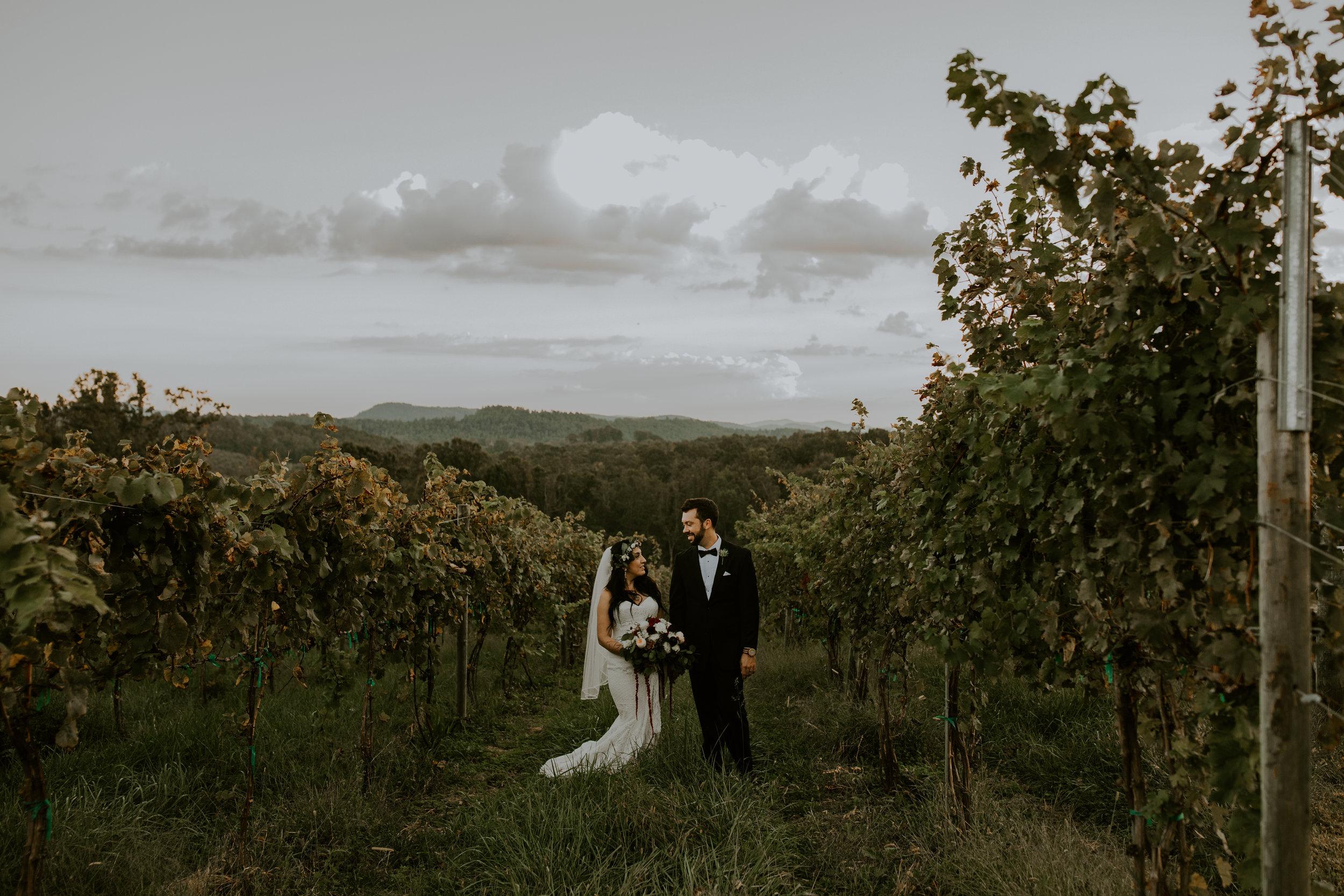 Point Lookout Vineyards Hendersonville North Carolina -Wedding-Renee and Jason-78.JPG