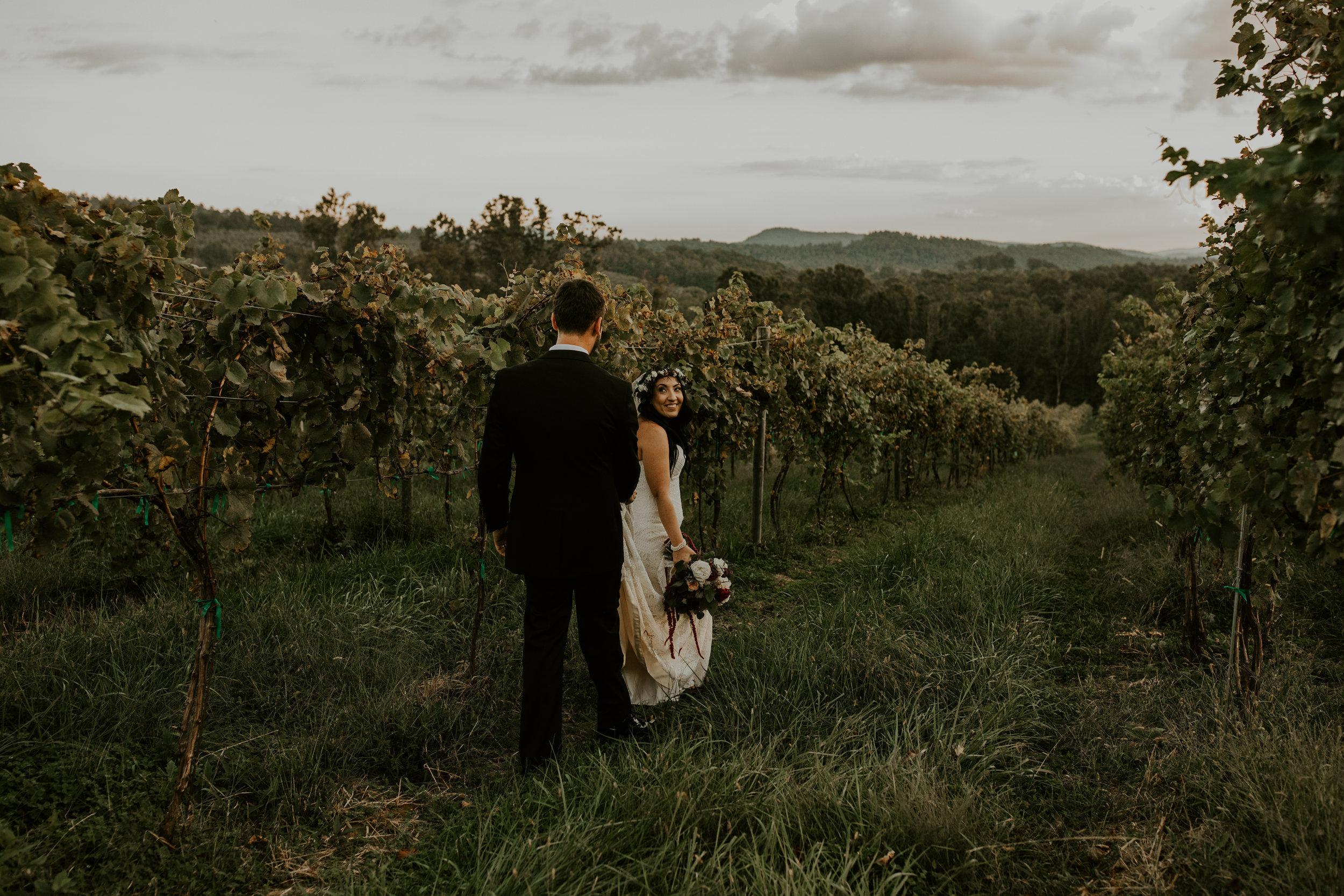Point Lookout Vineyards Hendersonville North Carolina -Wedding-Renee and Jason-75.JPG