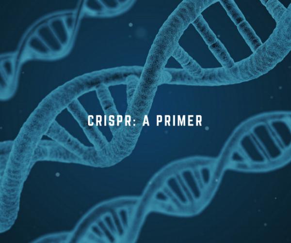 CRISPR-aprimer.png