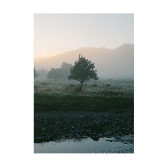 An early morning in New Zealand a few months back . . . . #artofvisiuals #photozine #chasinglight #exploretocreate #travelmore #earthoffical #beautifuldestinations #newzealand #roamtheplanet #oldtonecollective #solarcollective #lightzine