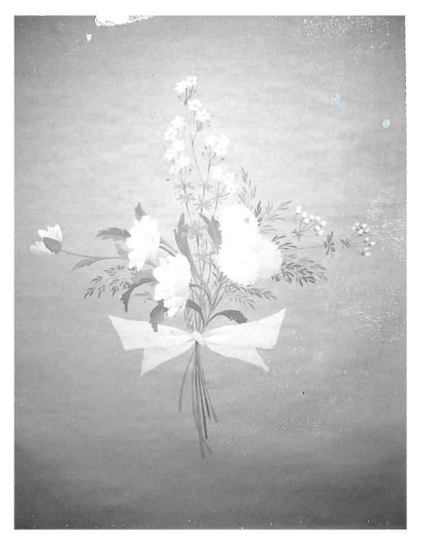 rose bow.jpg