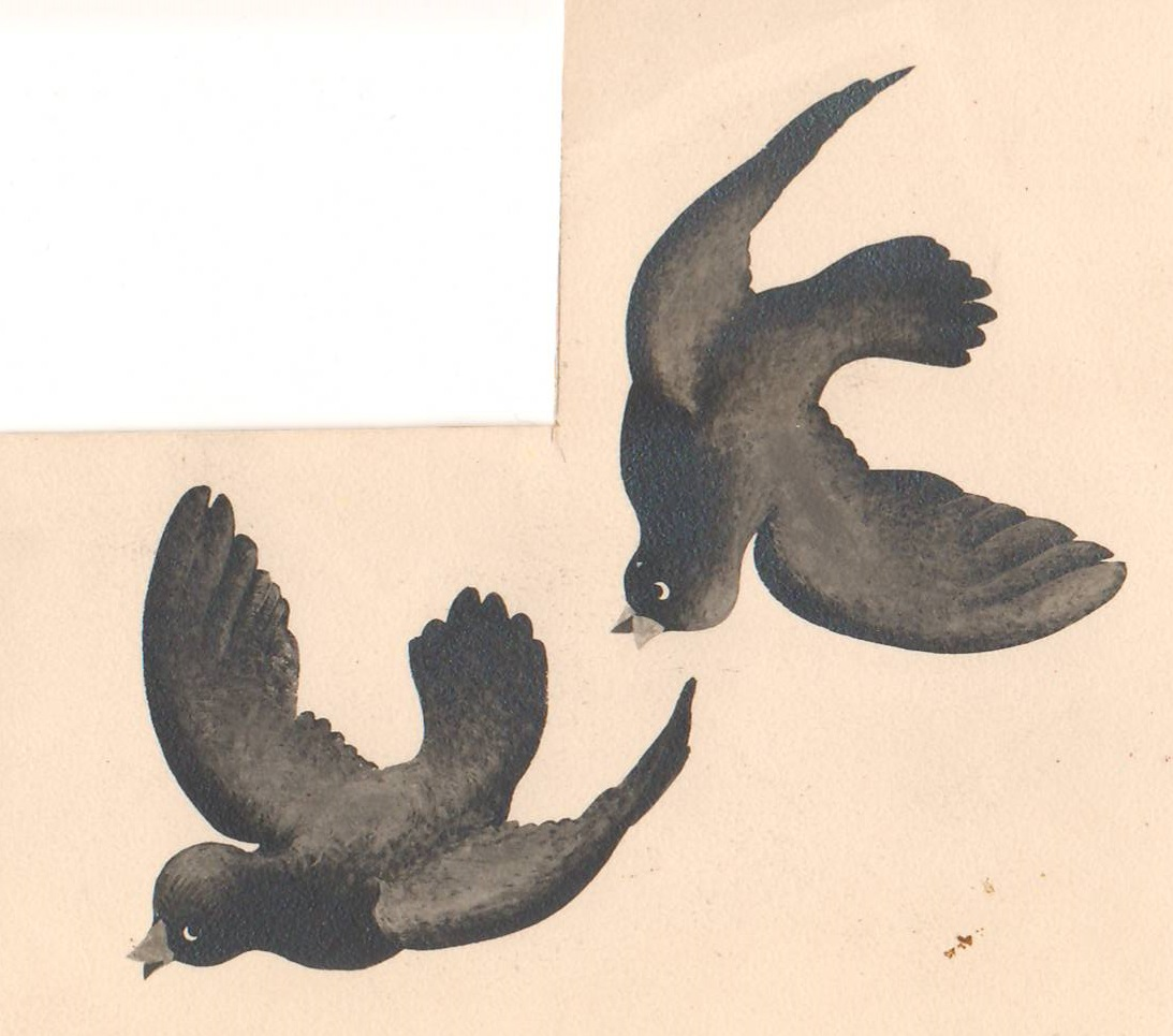 Birdies.JPG