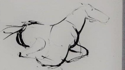 jonathan horses napa  (4).jpg