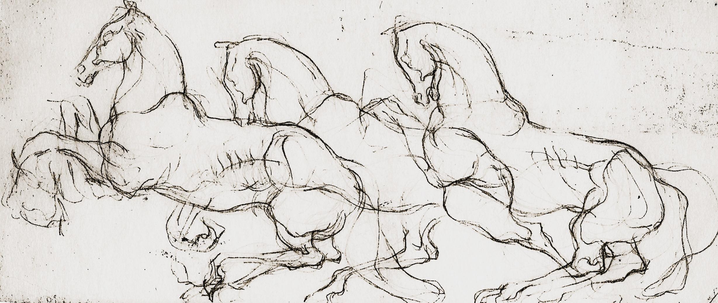 stubborn horse.JPEG