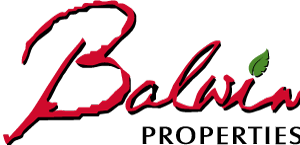 balwin_logo.png
