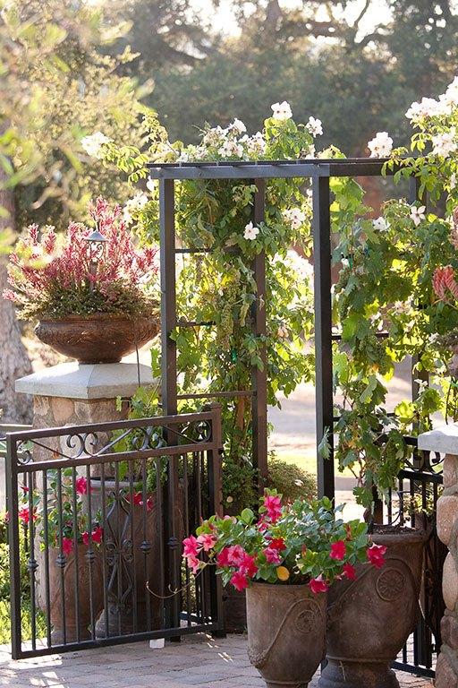 Flowers-Plants-and-GVF-Misc-1.jpg