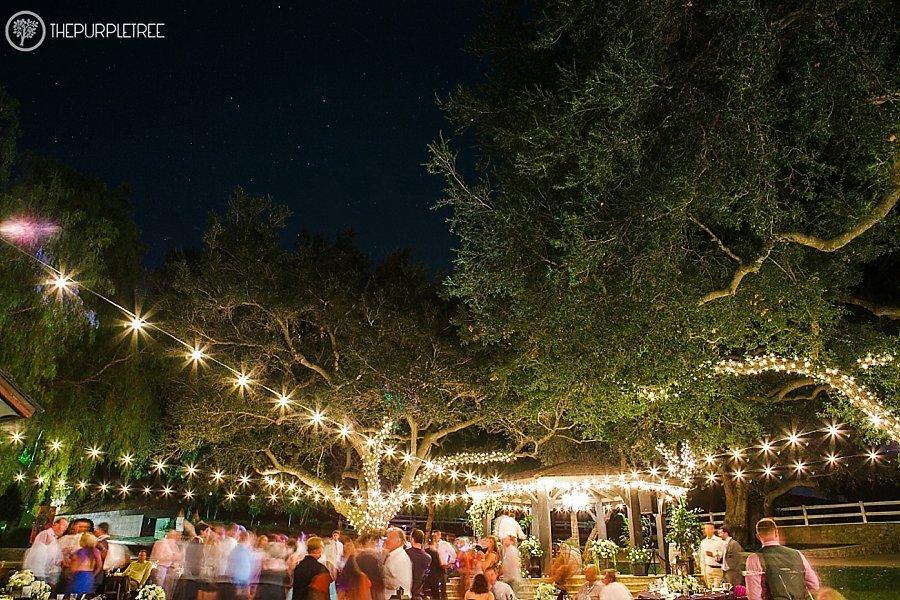 Frady_Wedding_cloriyohe_thepurpletree.com_4078.jpg