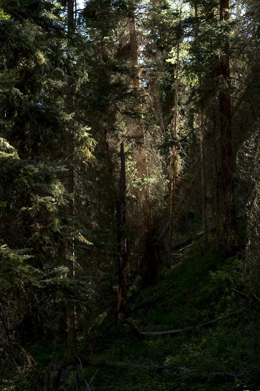 LIGHT PEAK   On Basalt Mountain, 2018, digital print numbered, signed, edition of four
