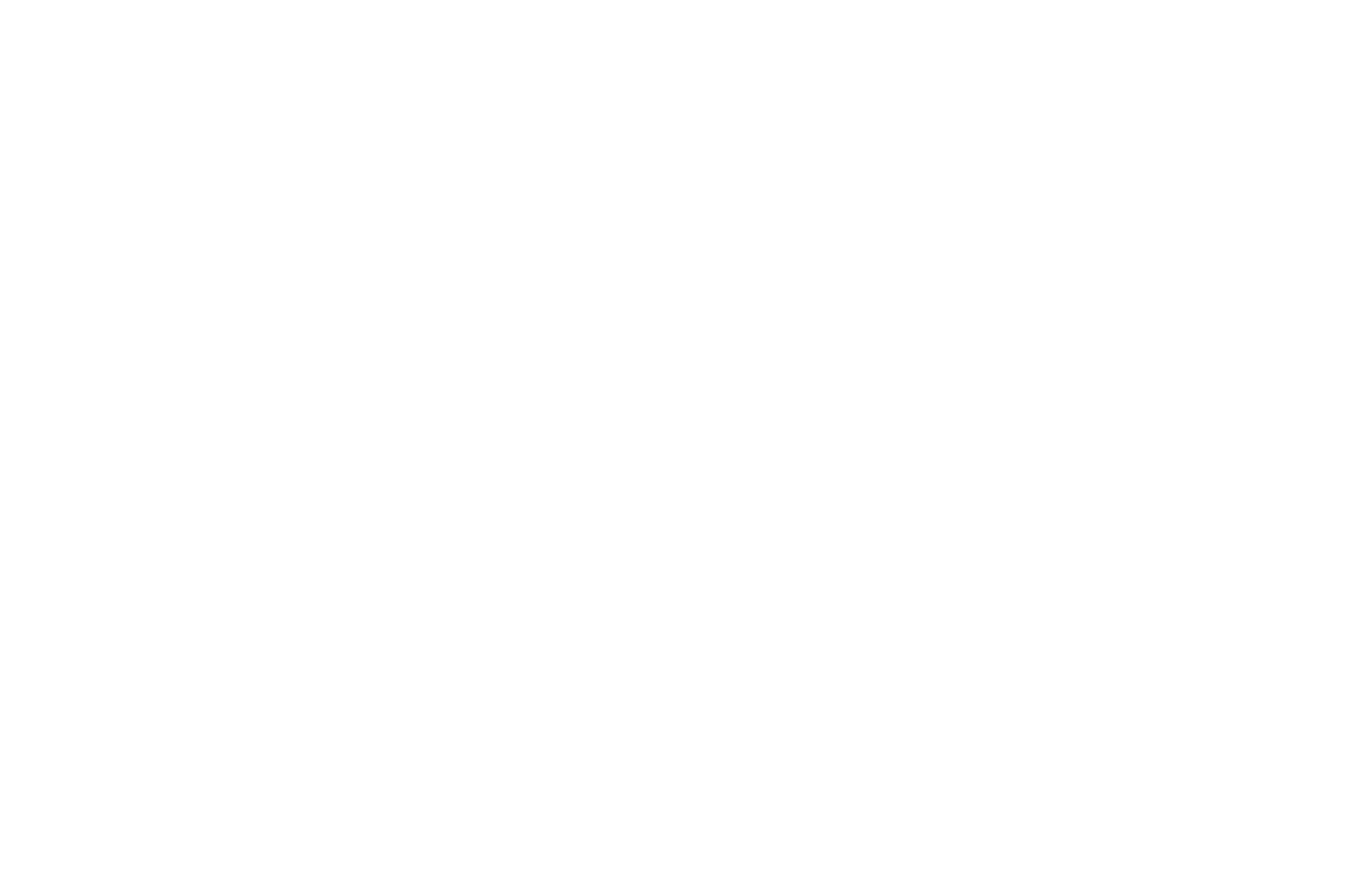 Caribbean Spirit Award - Caribbean Tales International Film Festival - 2018.png