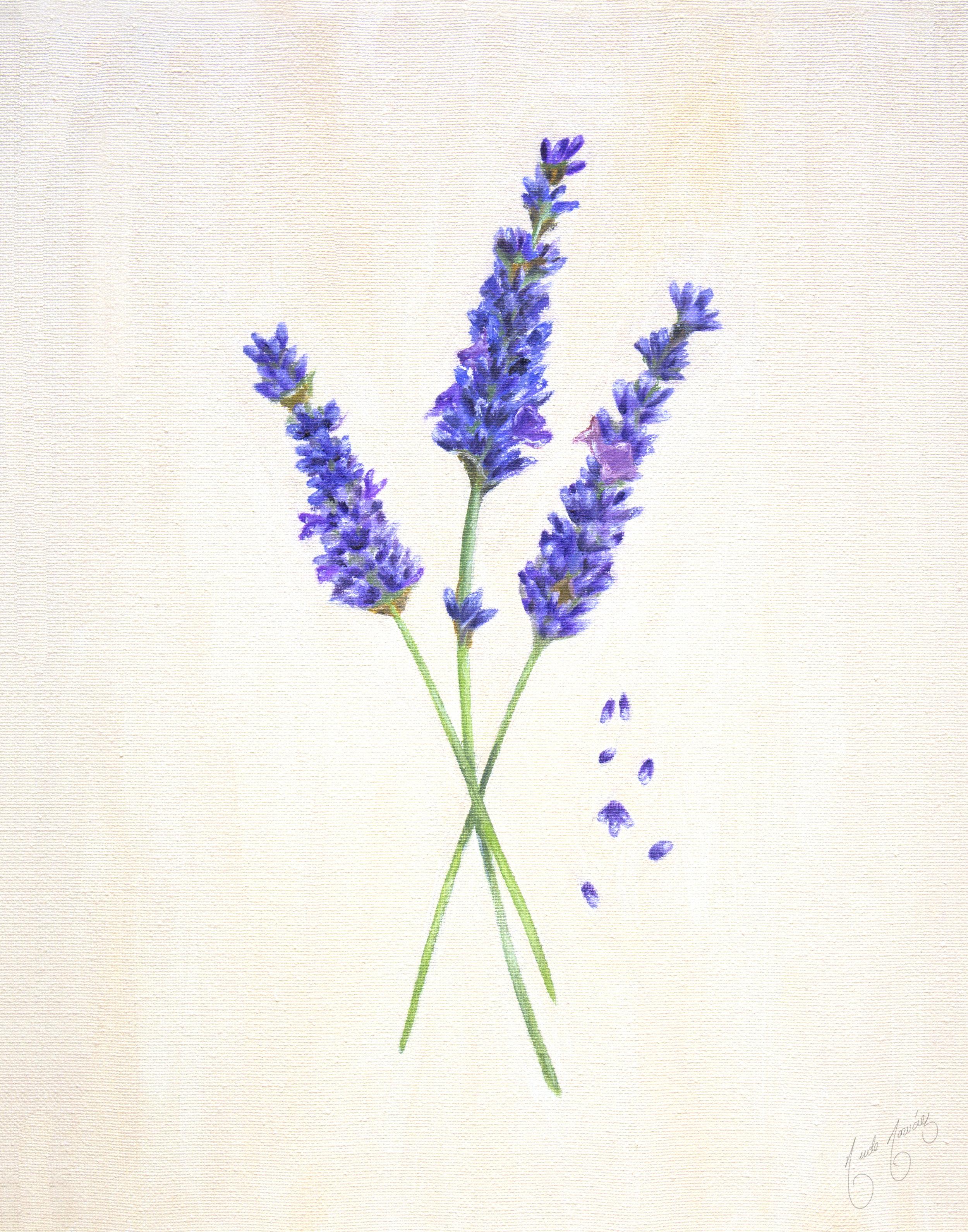 LavenderPrintHiRes+(1).jpg