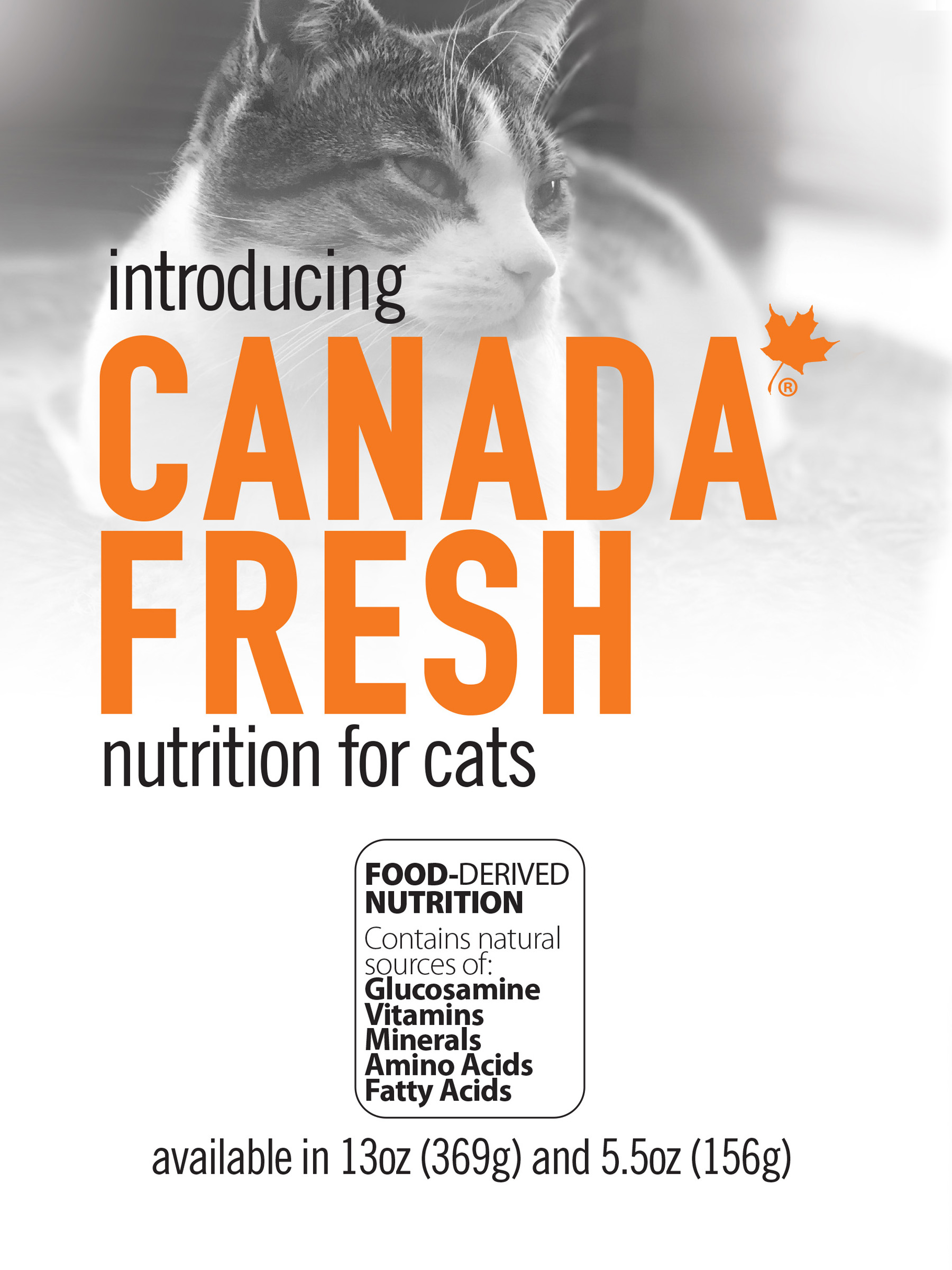 CAN-FRESH-HERO-CAT.jpg