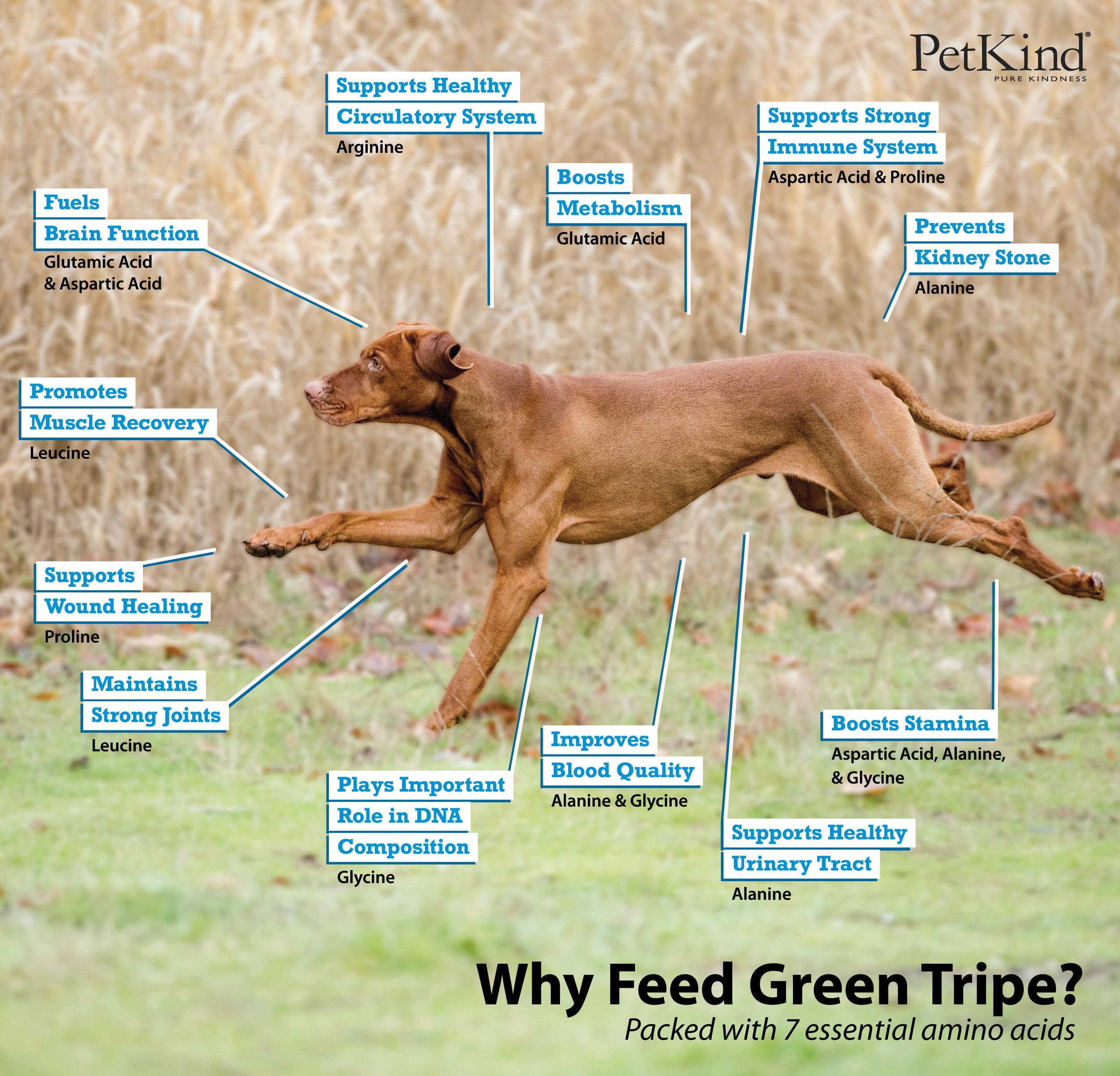 Green-Tripe-Infographic-(1).jpg