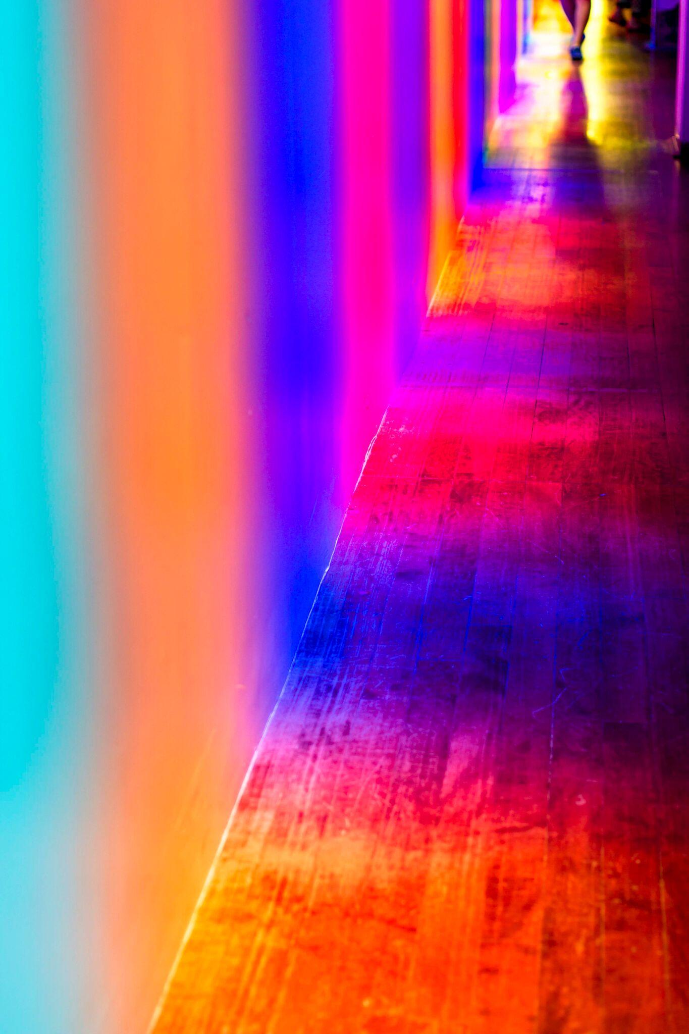Color Factory SF SFDAYDREAM