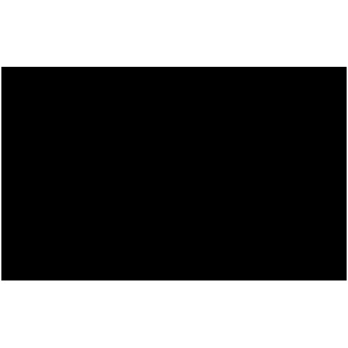 Logo_audi copy.png
