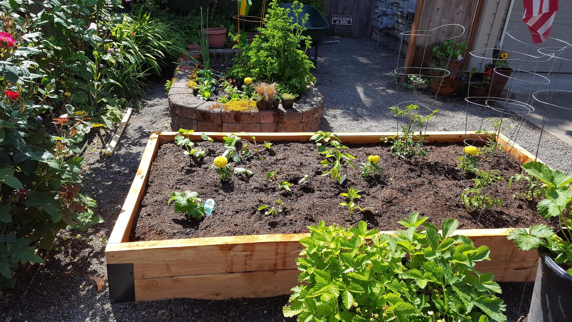 Image of: Portland Raised Beds Juniper Garden Beds