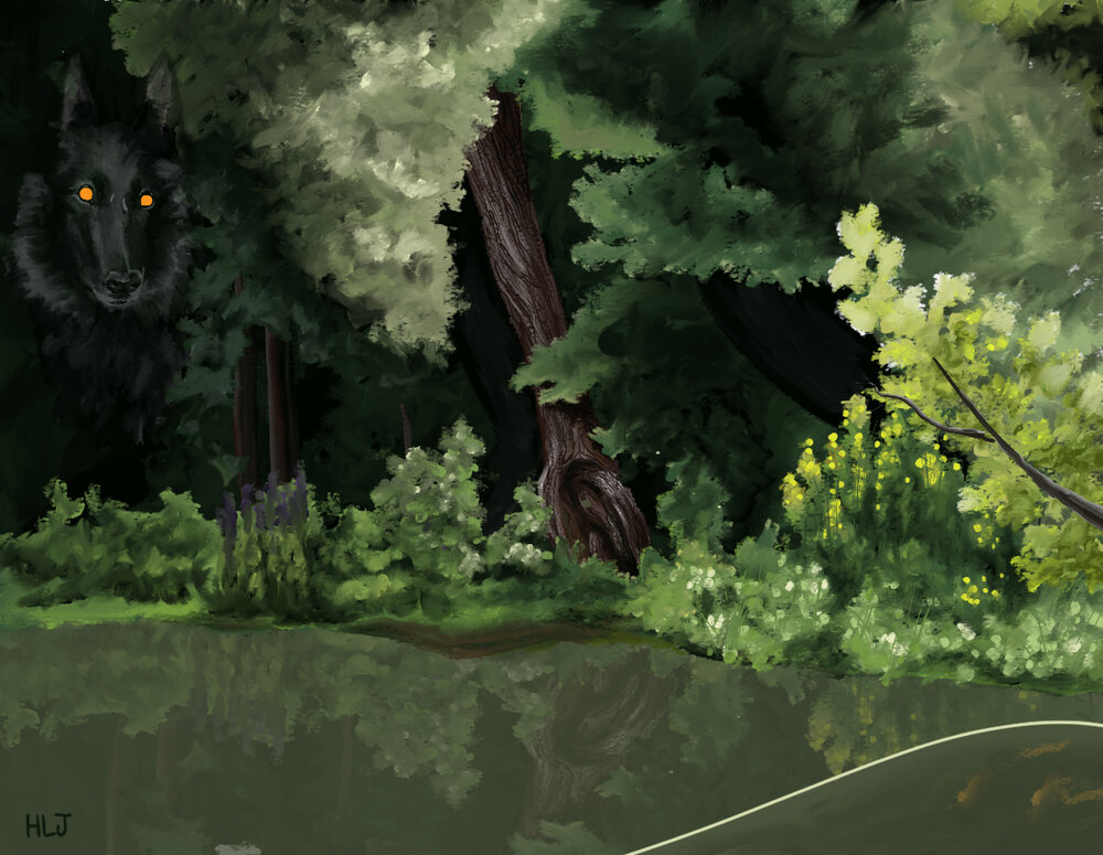 willowwoods.jpg