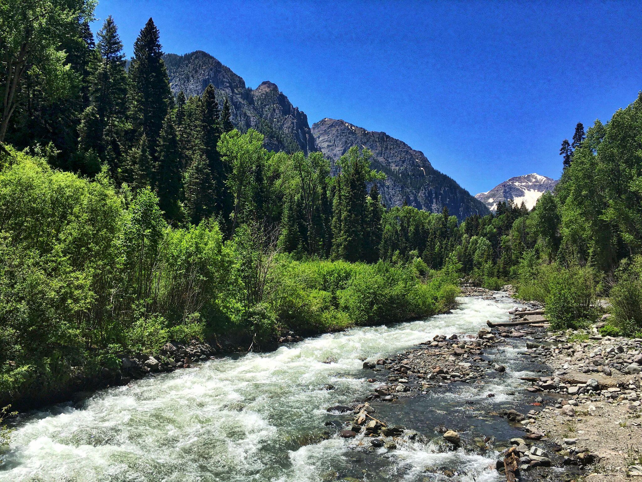 15 Ouray 1 Angel Creek.jpg