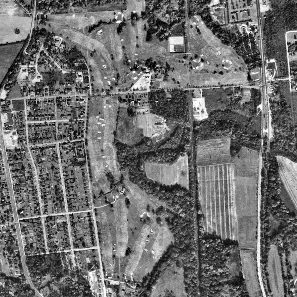 Belmont-HistroicAerial.jpg