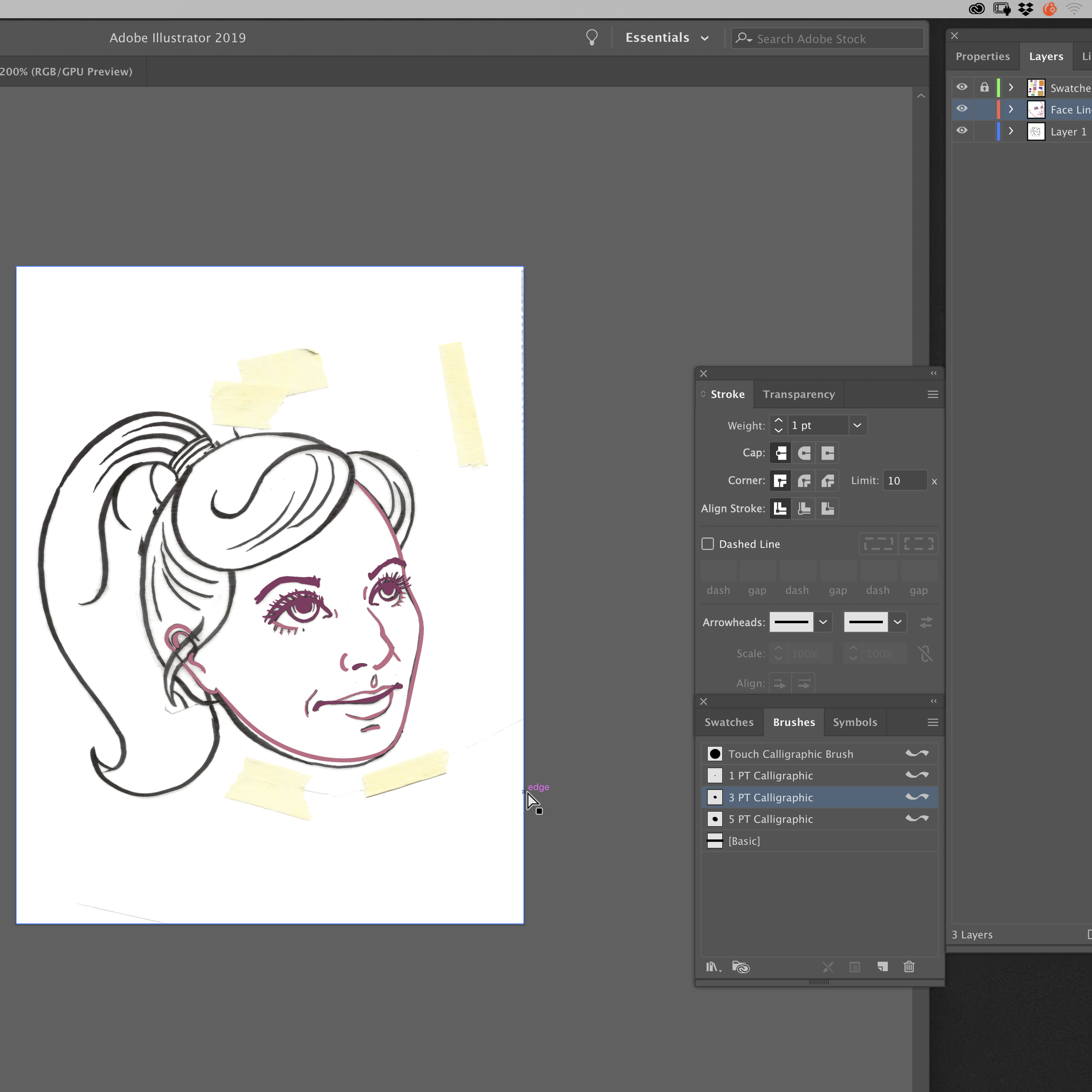 Ink Drawing - I created streamlined outlines in ink and scanned the ink drawing. Here I've just begun creating the vector outlines using the calligraphy brush and pen tools.